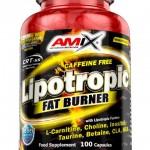 lipotropic_fat_burner_100cps_w_1957_l