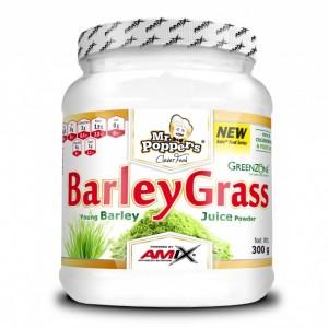 Mr. Popper's® BarleyGrass Juice Powder 300g